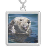 California Sea Otter Enhydra lutris) grooms 2 Square Pendant Necklace