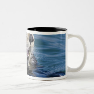 California Sea Otter Enhydra lutris) grooms 2 Two-Tone Coffee Mug
