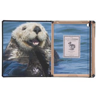 California Sea Otter Enhydra lutris) grooms Cover For iPad
