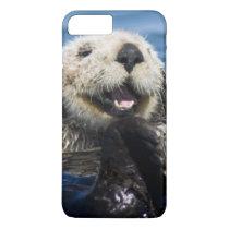 California Sea Otter Enhydra lutris) grooms iPhone 8 Plus/7 Plus Case