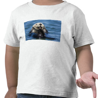 California Sea Otter Enhydra lutris) grooms Shirts