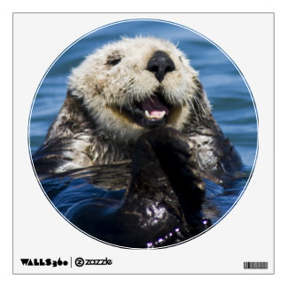 California Sea Otter Enhydra lutris) grooms Wall Decal