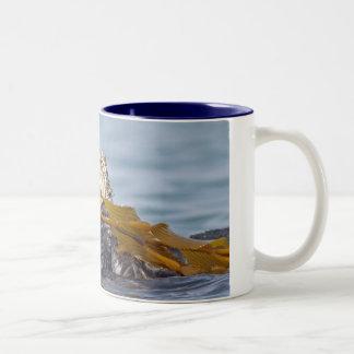 California Sea Otter Mug