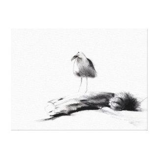 California Seagull 2012 Canvas Print