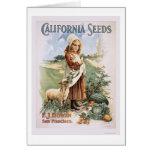 California Seeds Cards