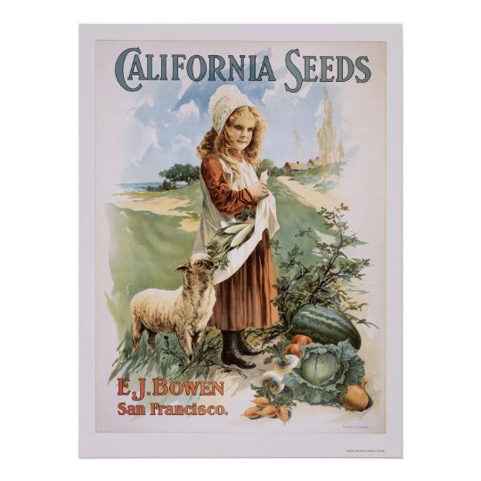 California Seeds Poster