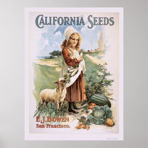 California Seeds Print