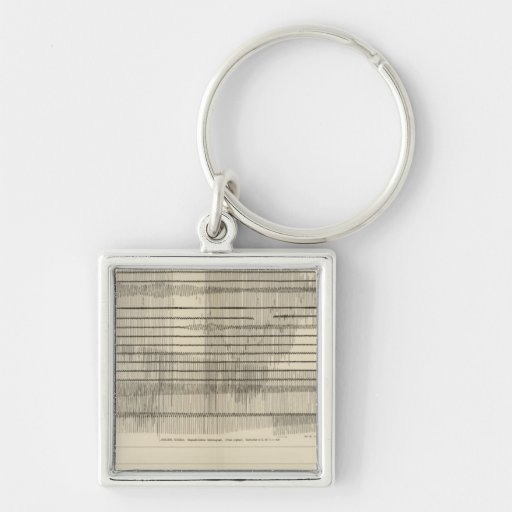 California Seismograms 10 Keychains