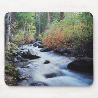 California, Sierra Nevada Mountains 11 Mouse Pad