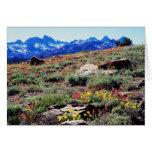 California, Sierra Nevada Mountains 1 Card