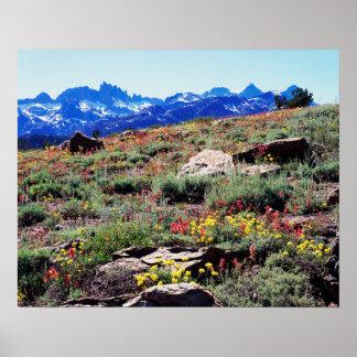 California, Sierra Nevada Mountains 1 Poster