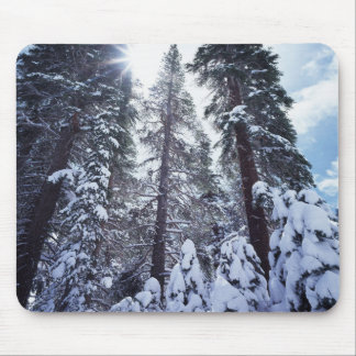 California, Sierra Nevada Mountains 9 Mouse Pad