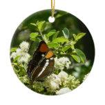 California Sister Butterfly in Yosemite Ceramic Ornament