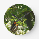 California Sister Butterfly with Flowers Colorful Round Wall Clocks