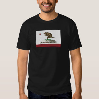California Skateboard Bear T-shirt