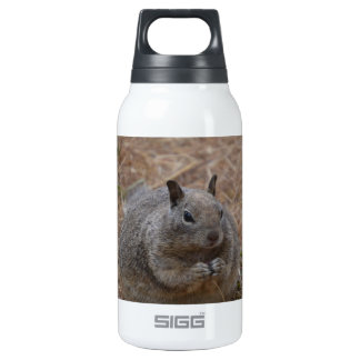 California Spotted Ground Squirrel Insulated Water Bottle
