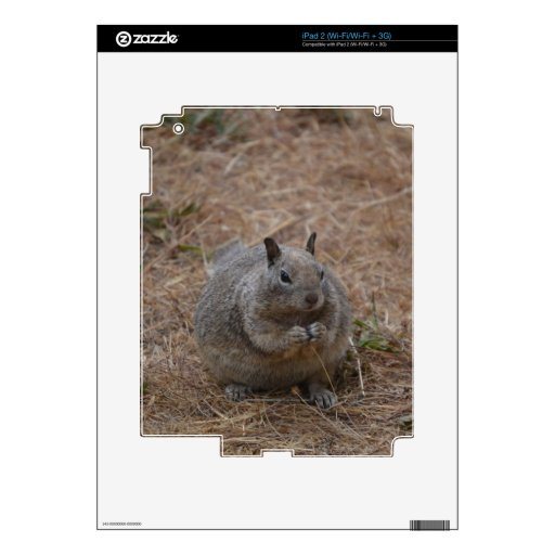 California Spotted Ground Squirrel Skin For iPad 2