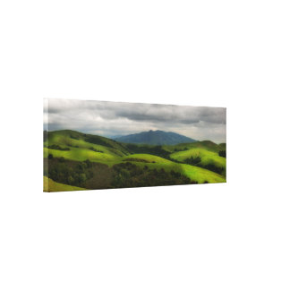 California Spring Panorama Gallery Wrap Canvas