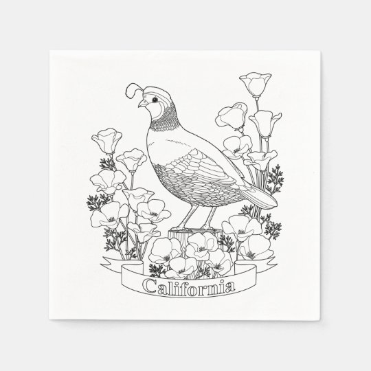 California state bird and flower coloring page napkin zazzle for California state flower coloring page