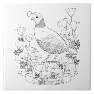 California poppies ceramic tiles zazzle for California state flower coloring page