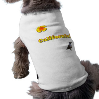California State Dog Clothes