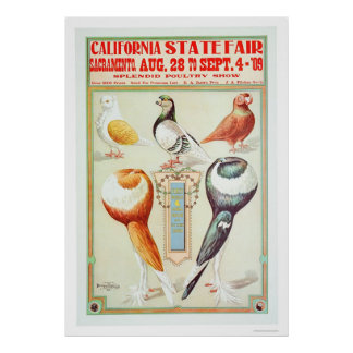California State Fair 1909 Poster