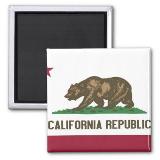 California State Flag 2 Inch Square Magnet