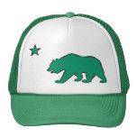 California state flag green bear symbol hat