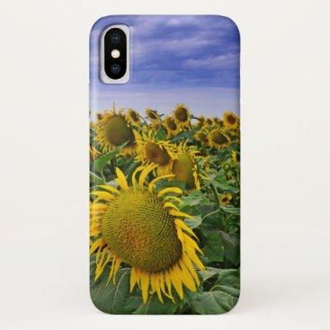California Sunflower Fields iPhone X Case