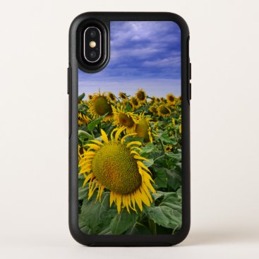 California Sunflower Fields OtterBox Symmetry iPhone X Case