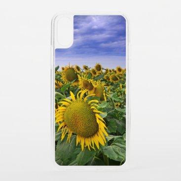 California Sunflower Fields iPhone XS Case