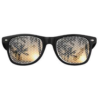 California Sunset Beach Wayfarer Sunglasses