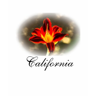 California T-shirt shirt