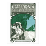 California The Golden State Postcards
