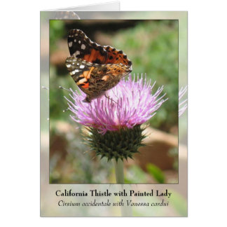California Thistle with Painted Lady - Notecard Stationery Note Card