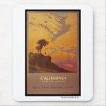 California. Tierra de las vacaciones de América Tapetes De Ratones