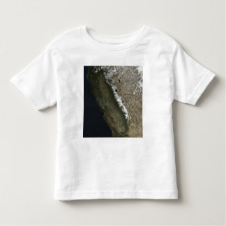 California Toddler T-shirt