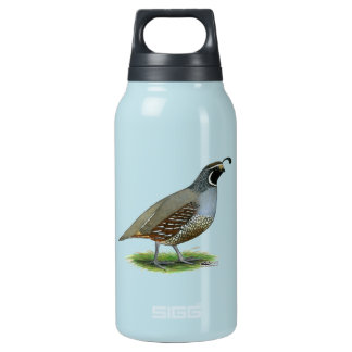 California Valley Quail Insulated Water Bottle