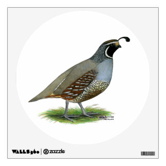 California Valley Quail Wall Sticker