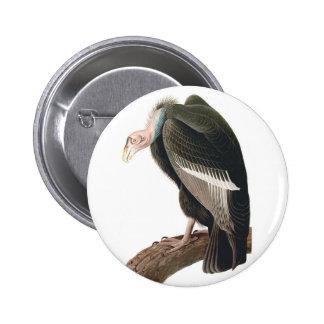 California Vulture (Condor), Audubon Fine Art Button