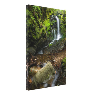 California Waterfall Canvas Print
