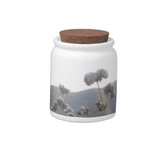 California Wildflowers Candy Jars