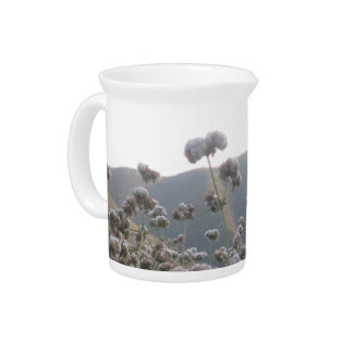 California Wildflowers Drink Pitchers