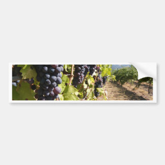 California Wine Country Bumper Sticker