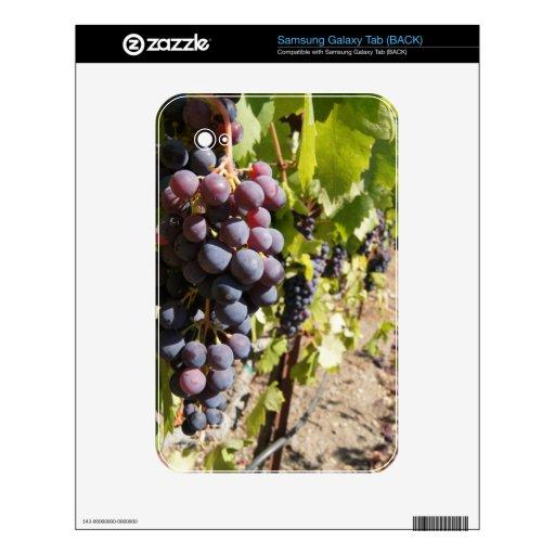 California Wine Country Samsung Galaxy Tab Skins