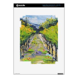 California winery, summer vineyard vines in Carmel Decal For iPad 3