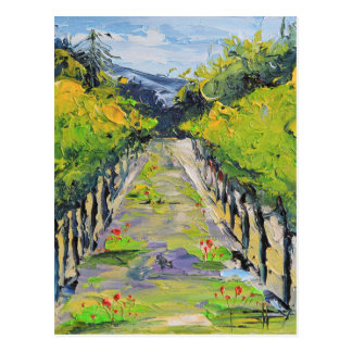 California winery, summer vineyard vines in Carmel Postcard