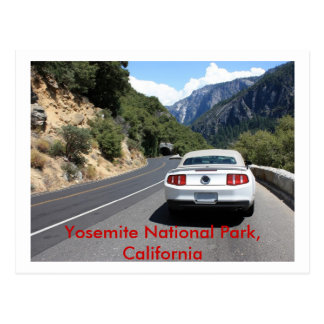 California, Yosemite park Postcard