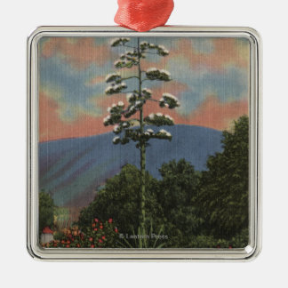 CaliforniaCentury Plant in Bloom Christmas Ornaments