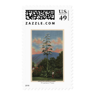 CaliforniaCentury Plant in Bloom Stamps